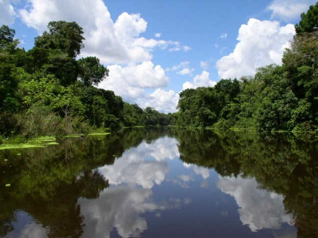 Grupal de Iquitos a Manaos por el Rio Amazonas - Buteler Viajes
