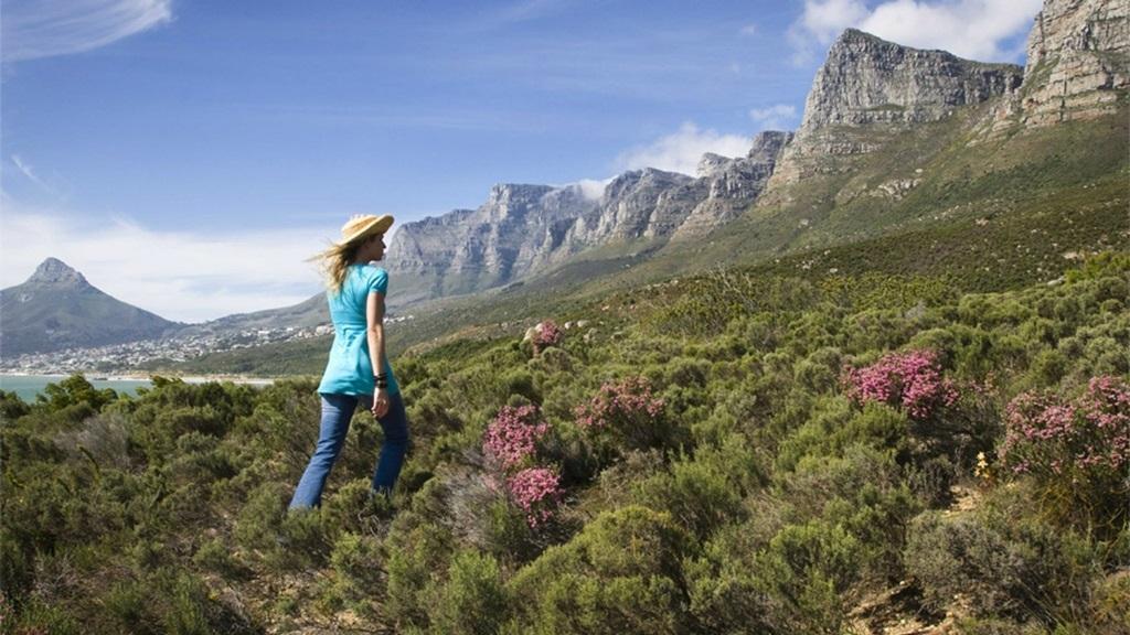 VIAJES GRUPALES A SUDAFRICA DESDE CORDOBA - Ciudad del Cabo / Johannesburgo / Knysna / Mpumalanga / Oudtshoorn / Parque nacional Kruger / Pretoria /  - Buteler Viajes