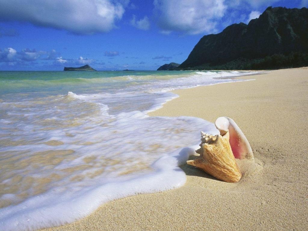 VIAJES A PUNTA SAL. VIAJES A PERU ALL INCLUSIVE DESDE CORDOBA - Punta Sal /  - Buteler Viajes