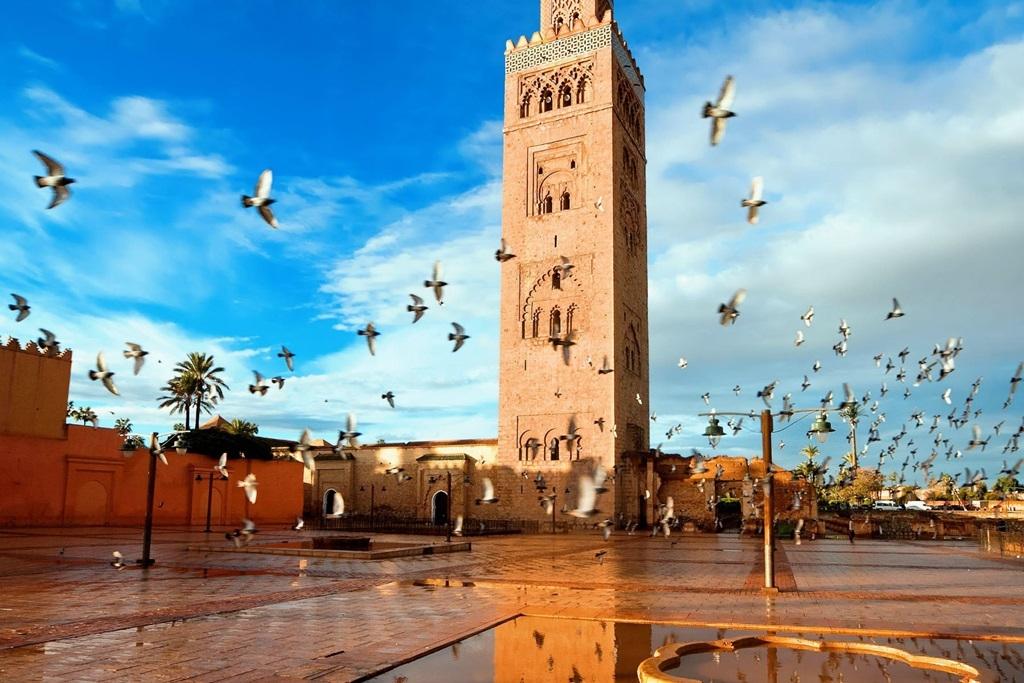 VIAJES GRUPALES A ESPAÑA, MARRUECOS Y CANARIAS DESDE CORDOBA - Cáceres / Cordoba (España) / Granada / Madrid / Marbella / Ronda / Sevilla / Tenerife / Toledo /  - Buteler Viajes